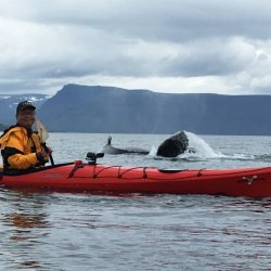 KayakingChina's picture
