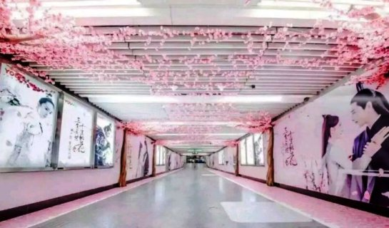 Spring Arrives Early in Beijing with Peach Blossom Subway Advertisement