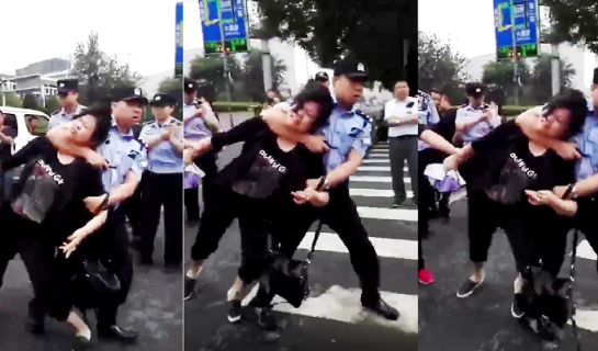 R Protests and Chaos at Beijing Zoo Market as Closure Imminent