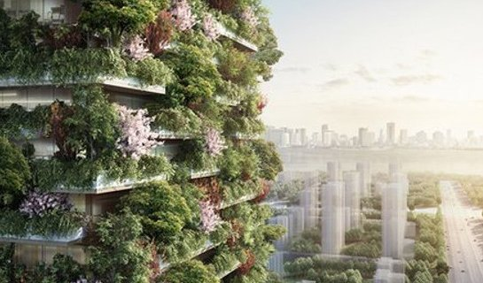 """Are """"Vertical Forests"""" the Solution to Beijing's Pollution?"""