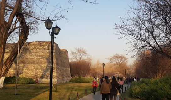 R Park Life: Everything You Need to Know About Ming Dynasty City Walls Relic Park