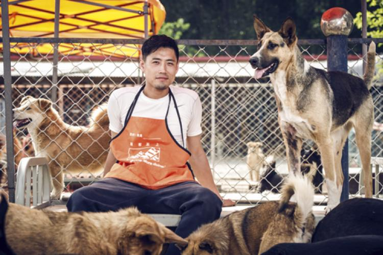 Dog's Best Friend - Xiangping Xu's dogged tale of animal activism
