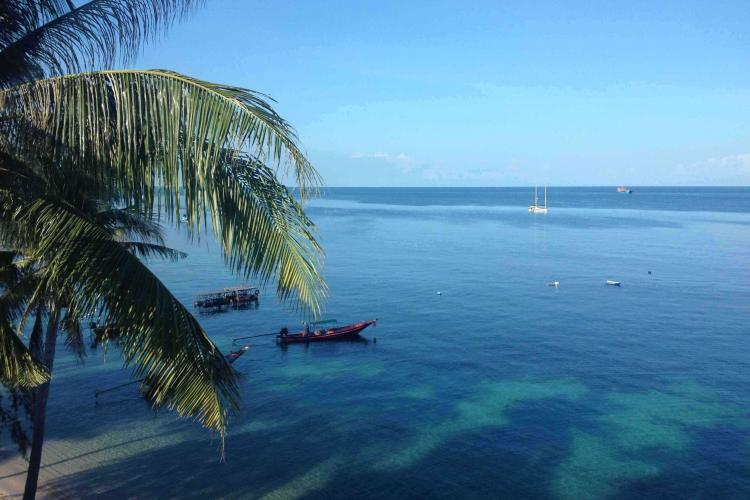 PADI Island: Backpackers Continue to Flock to Thailand's Koh Tao