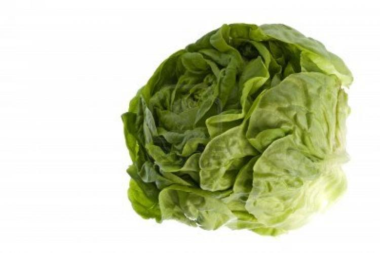 Tip of the Iceberg: Mixing Your Salad Greens in Beijing