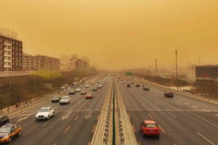 As Bad As Sandstorms Are, Resforestation Efforts To Eliminate Them May Be Worse