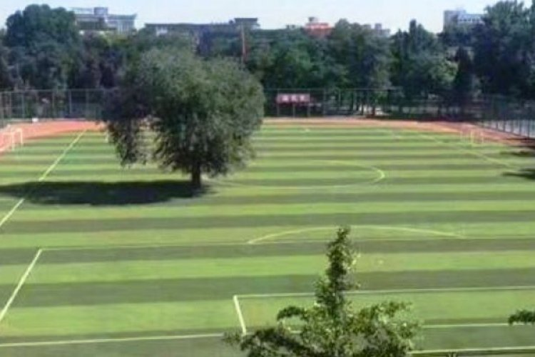 Everything is Normal at Beijing School Confirmed to Have a Tree Growing Smack Dab in the Middle of its Soccer Field