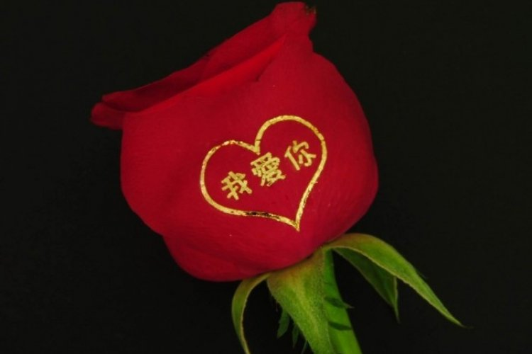 DP Valentine's Mandarin Monday: Five Alternative Ways to Say I Love You in Chinese