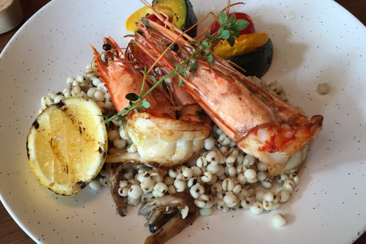 Tribe Lido Brings Out New Summer Lunch Dishes, Adds Delicious Grilled Prawns and Harissa Chicken Grain Bowl