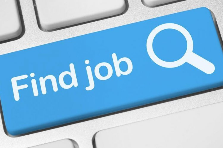 The Job Hunt: Work With Us, Project Manager,