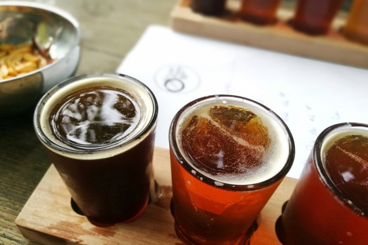 Explore Beijing's Local Microbrews With Lost Plate's Boozy Brewery Tour