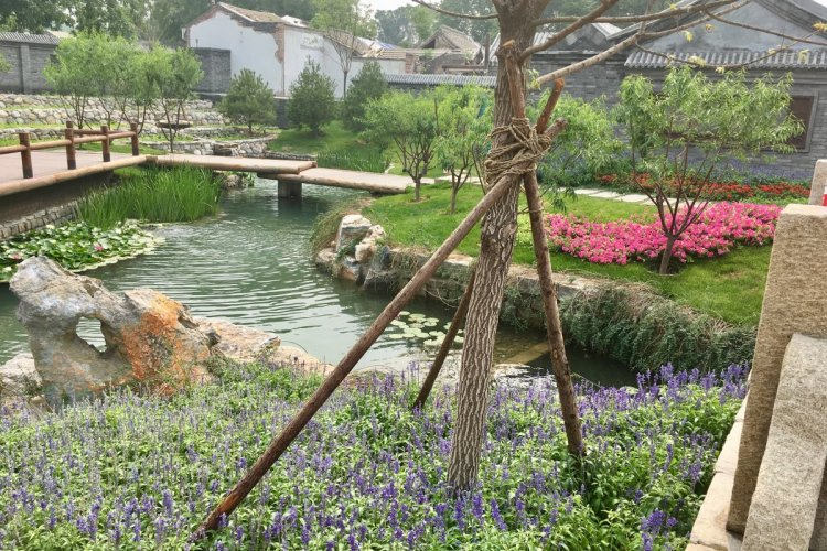 Beijing's Mystery Canal: Centuries-Old Brook Reimagined in Qianmen Neighborhood