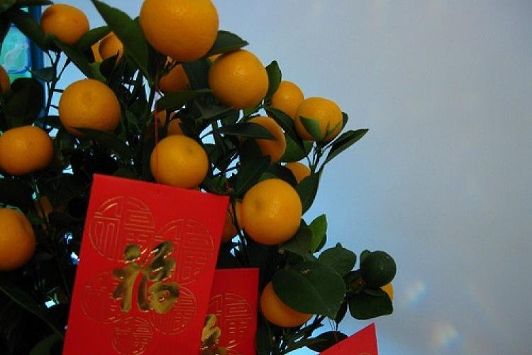 Chinese New Year Hongbao and Gift-Giving Etiquette | the Beijinger