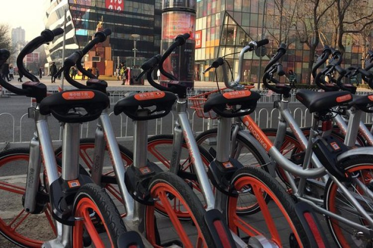 5 Beijing Shared Cycles Riders You Want To Kill The