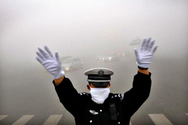 Feeling Flabby? New Research Shows the Smog May Be to Blame