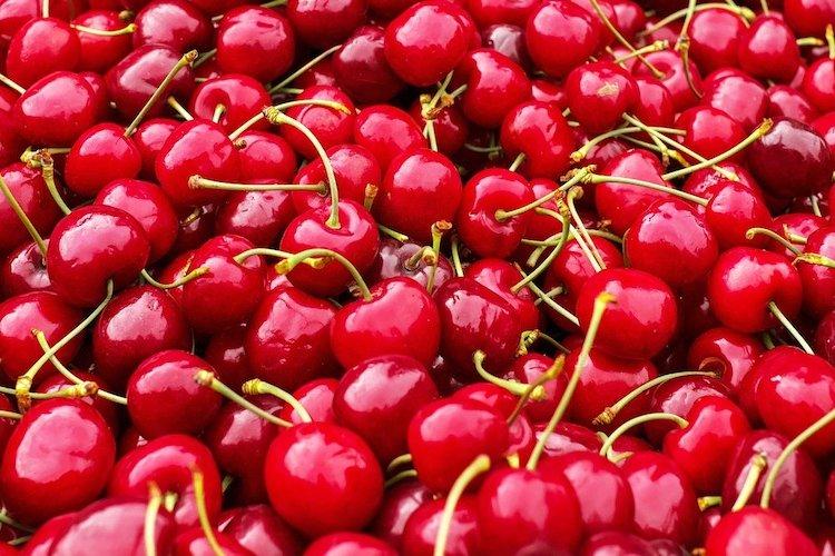 DP Season's Eatings: Making the Most of Cherry Season in Beijing