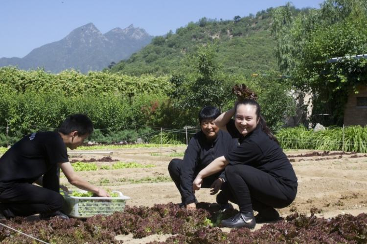 What is the Slow Food Movement and How Can You Get Involved in Beijing?