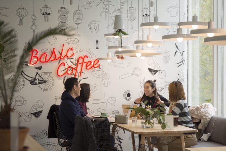 Basic Coffee Brings Quality Beans to the CBD
