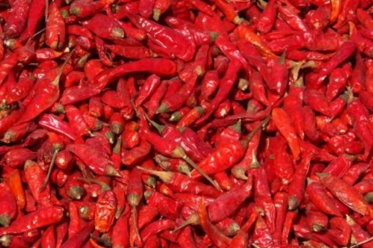 Tips to Cool Down Your Burning Lips at the Beijinger's Hot & Spicy Festival This Weekend