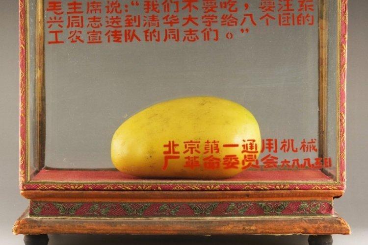 DP: Throwback Thursday: Golden Mango-Mao Love Fever