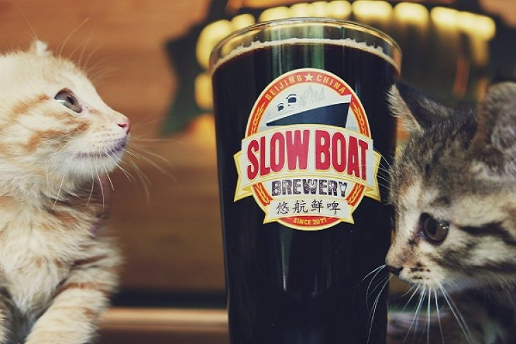 R What's Up in Beer: New Brews at Great Leap, NBeer, and Slow Boat, Beer&Cigar Pairing, GLB'sFundraising
