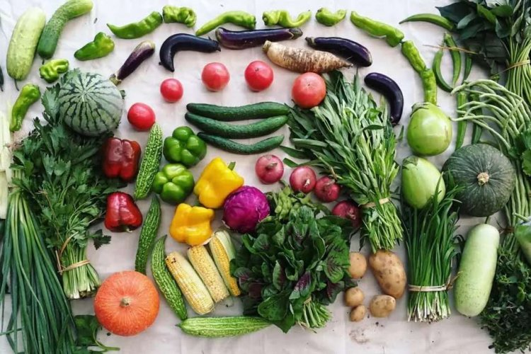Special Delivery! Get Fresh Organic Produce From Beijing Farms, Right to Your Door