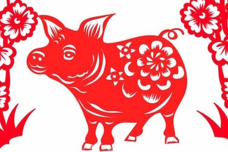 Mandarin Monday: Can a Pig Ever Truly Love a Snake?   the