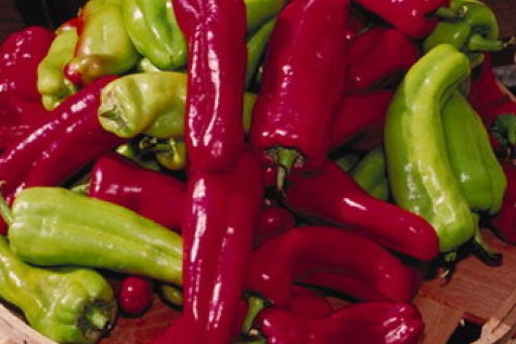 Beyond Pleasure & Pain: Join the Beijinger's Chili Pepper Eating Contest