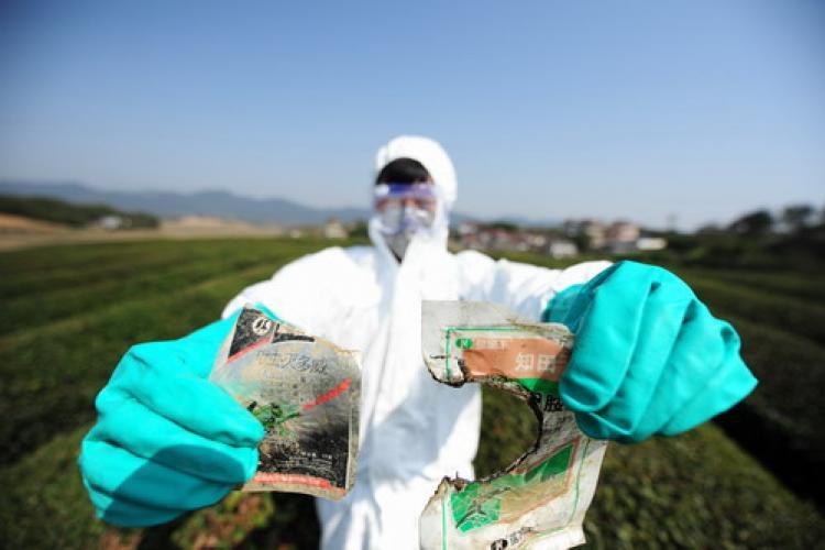 The Tea Audit: Is Greenpeace Overreacting?