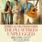 The Plum Trees Unplugged