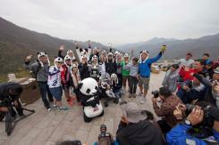 panda_corner_beijing23.jpg