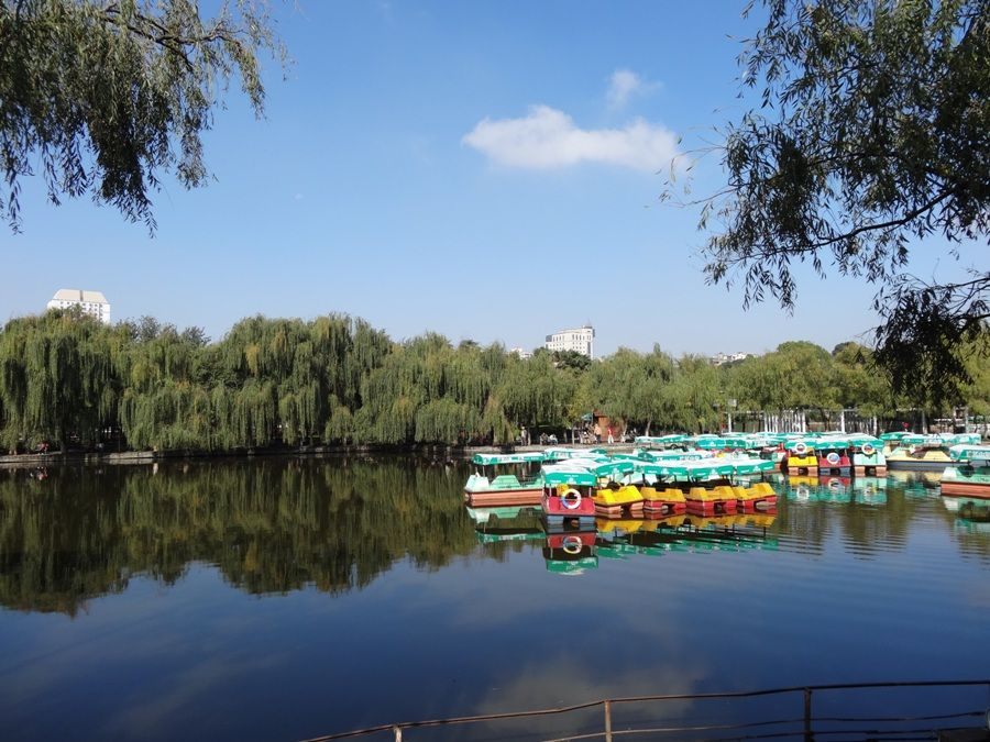 Six reasons to live in kunming south of the clouds the for Warm cheap places to live