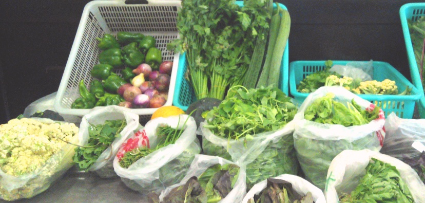 Another Organic Option: Modernista Welcomes Farm to Neighbors Market Every Weekend