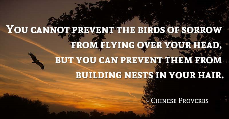 Mandarin Monday Learn Inspirational Chinese Proverbs Both Real And Custom Inspirational Proverbs