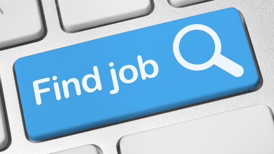 The Job Hunt: