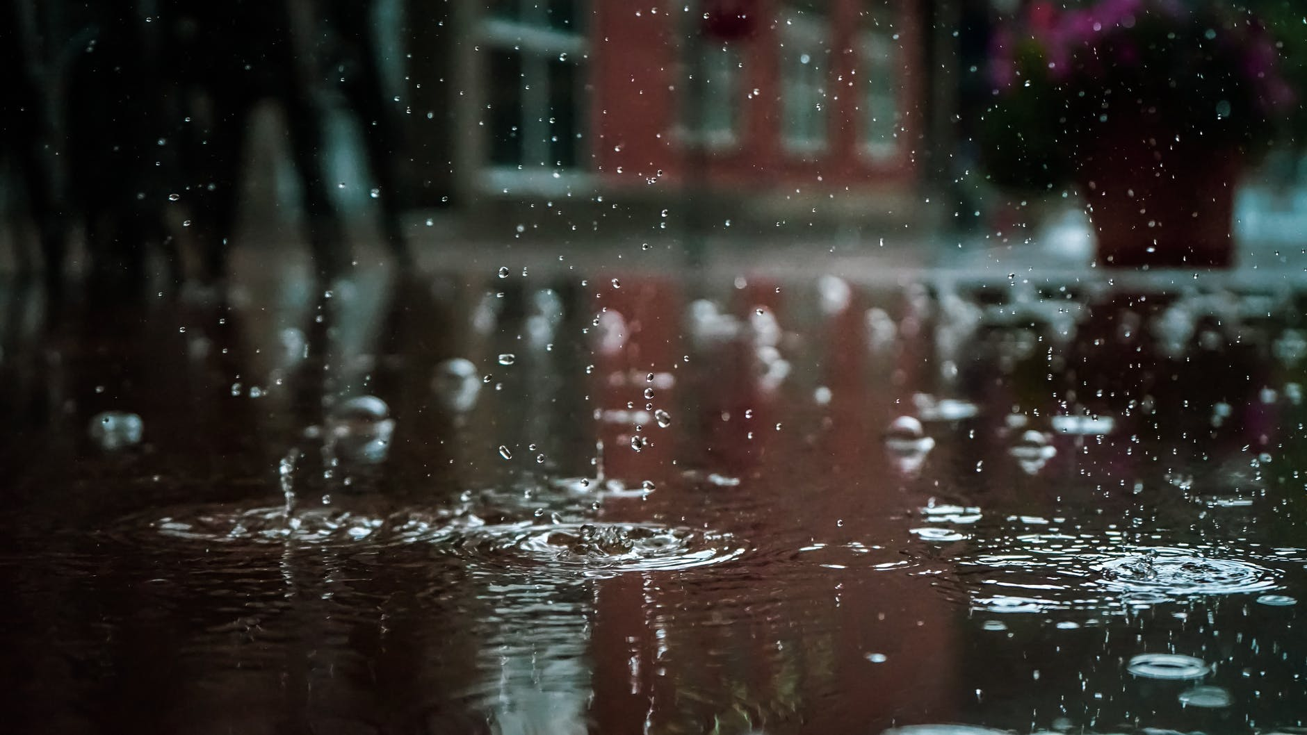 TaoBrowser: Best Finds for a Rainy Day